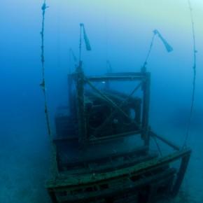 Récifs artificiels de la baie du Prado à Marseille : le suivi de la faune benthique
