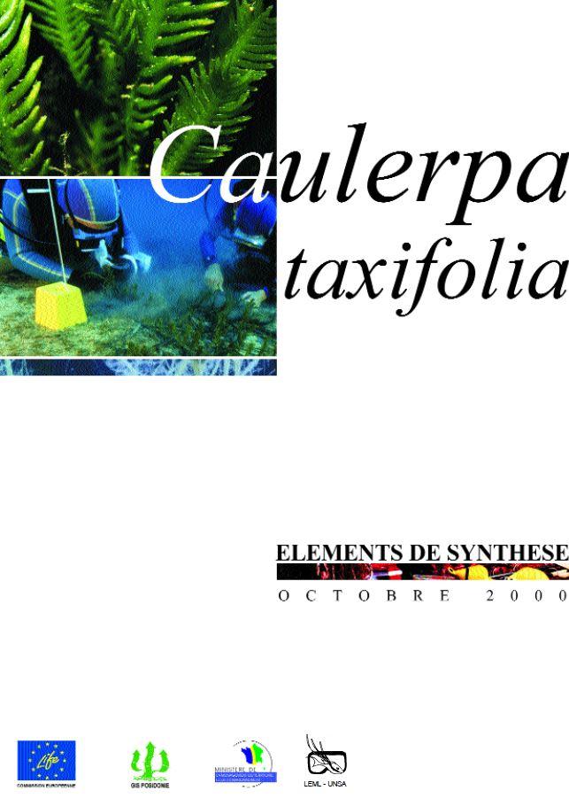 Caulerpa_Taxifolia_Plaquette_DIREN_page_de_garde