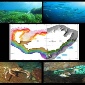 Port-Cros : nouvelle description et cartographie des biocénoses du milieu marin