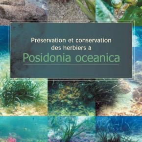 """""""Préservation et conservation des herbiers à Posidonia oceanica"""" - Le guide RAMOGE"""