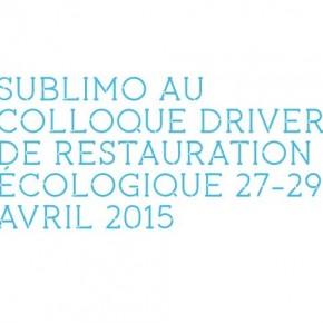 Participation au Colloque DRIVER