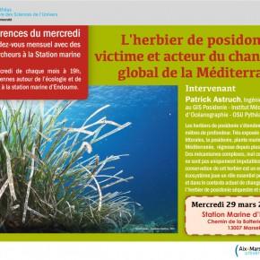 Visionner la conférence 'L'herbier de posidonie : victime et acteur du changement global de la Méditerranée' donnée à la Station Marine d'Endoume