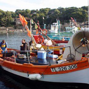 Echantillonner par pêche, échantillonner avec les pêcheurs