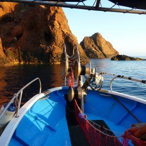 Suivi de l'effort de pêche professionnelle dans la réserve naturelle de Scandola (Corse)
