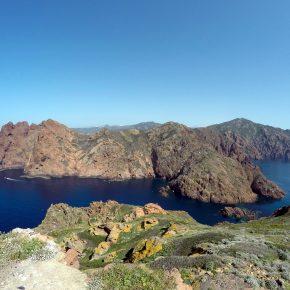 Etude et caractérisation de la fréquentation maritime et de son impact sur l'herbier de posidonie, le peuplement de poissons et le balbuzard pêcheur (Pandion haliaetus) dans la réserve marine de Scandola (Corse) - INTERREG GIREPAM